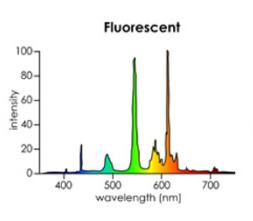 Farbspektrum Leuchtstoffröhren